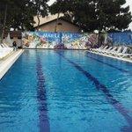 Подогреваемый бассейн тёплый в любую погоду