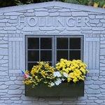 hollinger window
