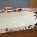 Carlos' famous bath