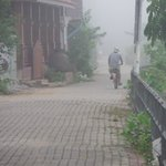 Cycling into the morning mist