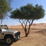 Merzanne desert trips