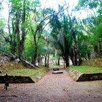 Lamanai Eco Adventures