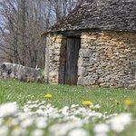 Cabane en pierre sèche du Domaine de la Rhonie