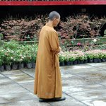 A Monk in Baoguo Temple