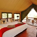 Inside of Safari Tent