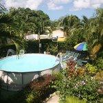Foto de Palm Paradise Guest House + 2 Apartments