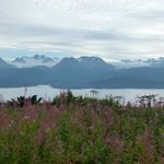 Kachemak Bay and Kenai Peninsula, Alaska