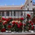 Beautiful spring details of hotel de Su Merced
