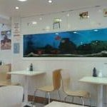 view of the chippy with the attractive live fish tanks