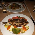 Grilled silver bream dish and Traditional lamb dish