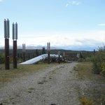 Alaska Pipeline in central Alaska