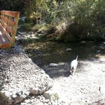 Hiking Columbine Creek Trail