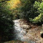 Nature and Hiking too!
