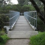 Approaching the footbridge