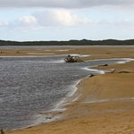 Screw Creek runs out to Andersons Inlet, fascinating at low tide