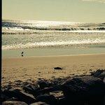 ogunquitt beach