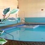 Heated indoor pool and whirlpool hot tub