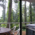 Pine House porch view