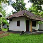 Palmy Cottage