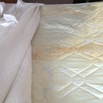 heavily stained mattress