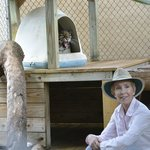 Judy and Ming the Clouded Leopard, Panther Ridge CC