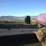 My daughter looking out across the corral...