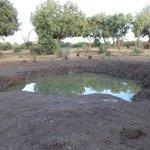 03/2013, Ndololo Camp, Tsavo East, Wasserloch