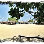 Lovely situated at light sand beach