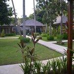 jardin devant la chambre