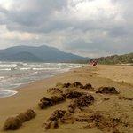 Iztuzu Beach - Dalyan - Turkey