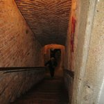 Stairs to cellar