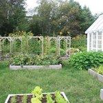 Kitchen garden on the grounds.