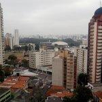 Vista - Ibirapuera