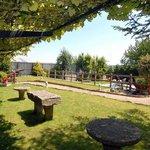 Jardín y Piscina / Garden and Pool