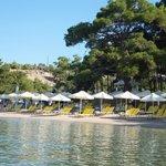 Photo of Royal Paradise Beach Resort & Spa