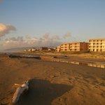 Driftwood Shores Resort & Restaurant