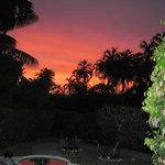 Sunset over our garden