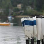 all types of water activities, learn how at the classes offered