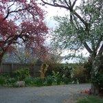 Picturesque gardens around circular driveway