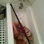 Salle de bain du 1er