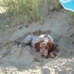 sur la plage des Saumonards je bulle!!!