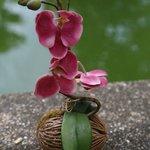 Цветочек из номера