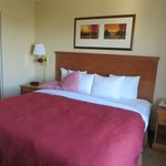 Country Inn & Suites By Carlson, Davenport Foto