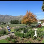 Beautiful Views of the Montagu mountains from our room.