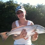 lots and lots of redfish!!