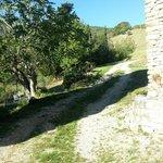 B&B Il Sentiero di Armenzano Foto
