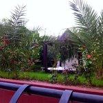 Vue de la terrasse du petit dej