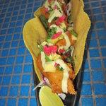 Hurricane Fried Fish Taco