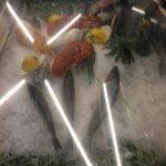 fresh seafood offerings