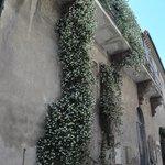 Exterior of BB Michelangeli